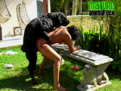 Outdoor dog sex video
